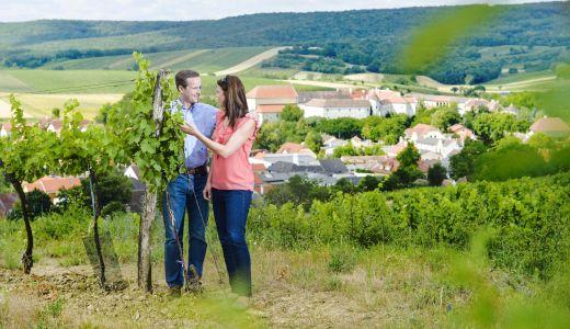 Frühling im Schloss Mailberg
